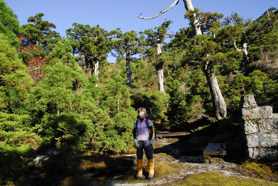 2012年10月、11月 『広島から、鹿児島へ、そして憧れの屋久島宮之浦岳』_c0219616_2122373.jpg