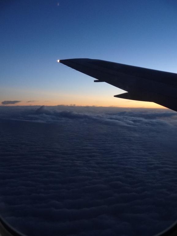 2012年11月ハワイ親連れ旅行~その3~_d0219834_2001398.jpg
