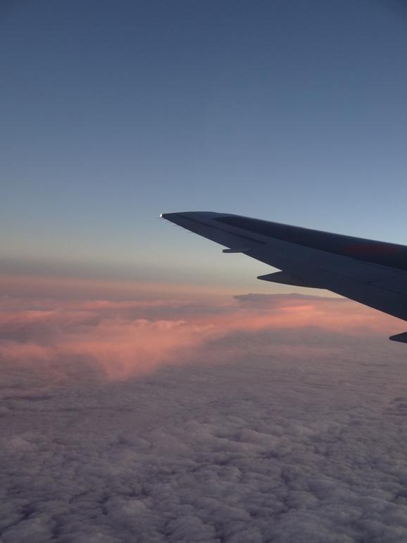 2012年11月ハワイ親連れ旅行~その3~_d0219834_2005938.jpg
