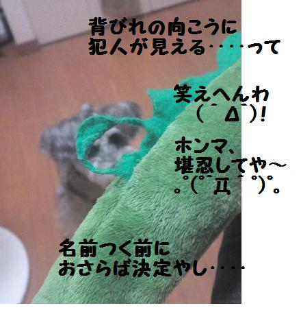 a0230864_9155845.jpg