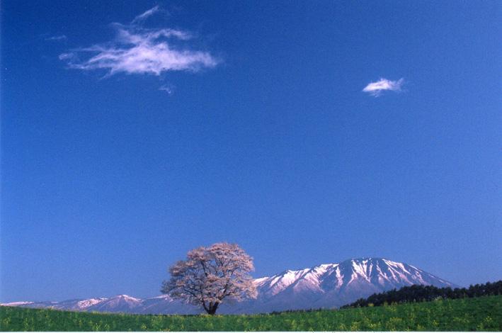 NHK「小さな旅」が故郷(千葉・東庄町)の「入正醤油」を紹介_c0014967_2222595.jpg