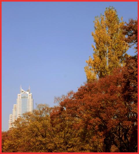それぞれの秋。「酒は学校だ!」。_e0236072_5575452.jpg