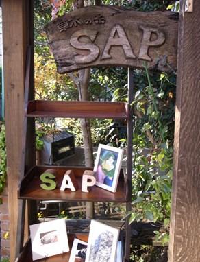 SAP_a0288689_864727.jpg