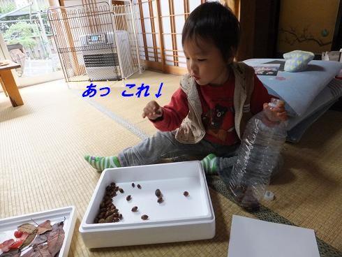 f0179203_1723019.jpg
