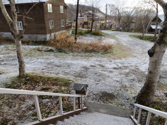 初雪!_d0070814_20234165.jpg
