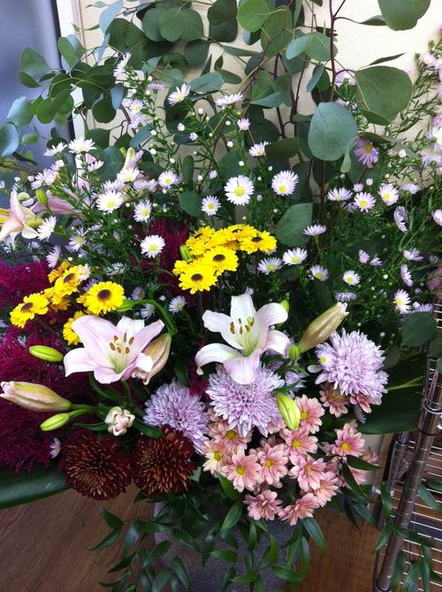 今週のお花とセール情報_a0200423_3524137.jpg