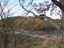『小和滝の家』 配筋検査_e0197748_1855331.jpg