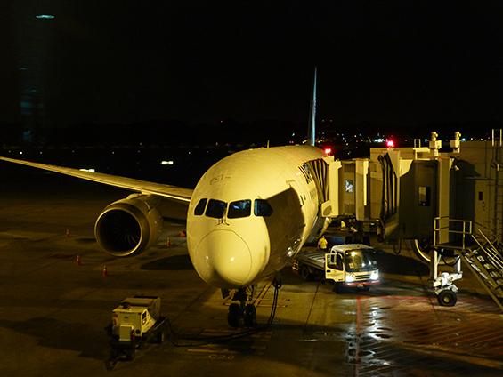Boeing 787 Dreamliner_c0030685_14332749.jpg