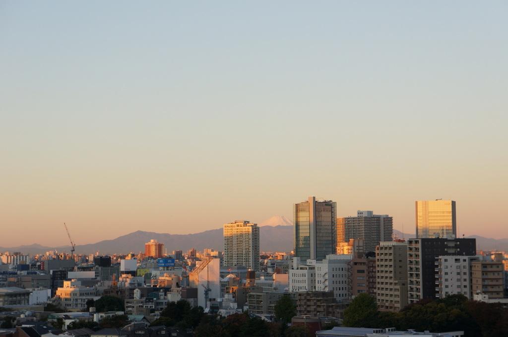 ホテル→小岩へ、となれば夜は阿波屋さん。_c0180686_11213283.jpg