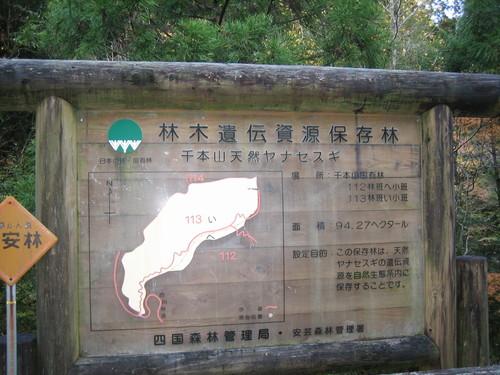 高知県産材・顔の見える産地ツアー_a0155290_12561180.jpg