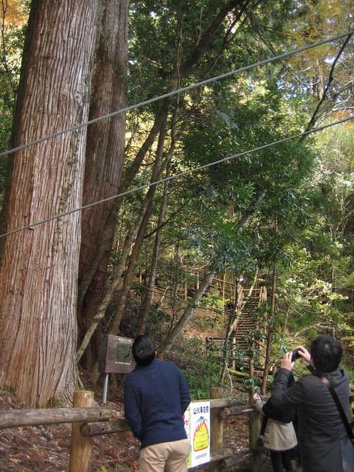 高知県産材・顔の見える産地ツアー_a0155290_1311879.jpg