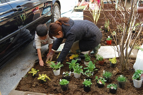 Yガーデン・植栽工事_c0124100_013189.jpg