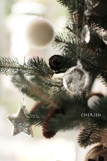 クリスマスツリー登場☆_b0208604_2037270.jpg