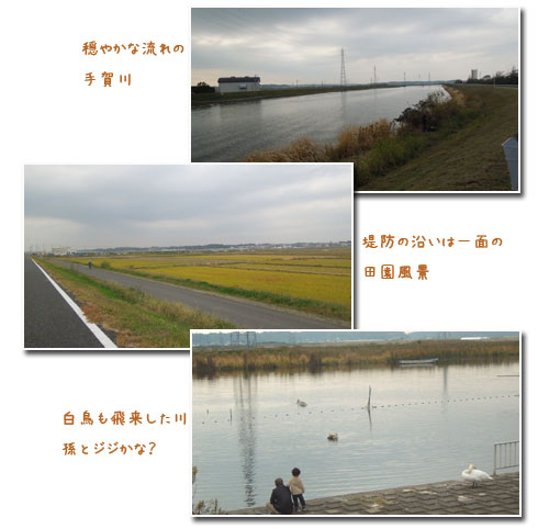 c0051105_17462233.jpg