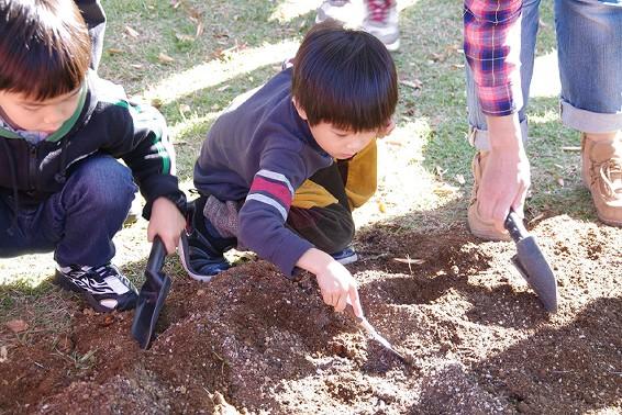 「花いっぱい!2,000球の球根を植えよう!」を開催しました。_e0235911_150592.jpg