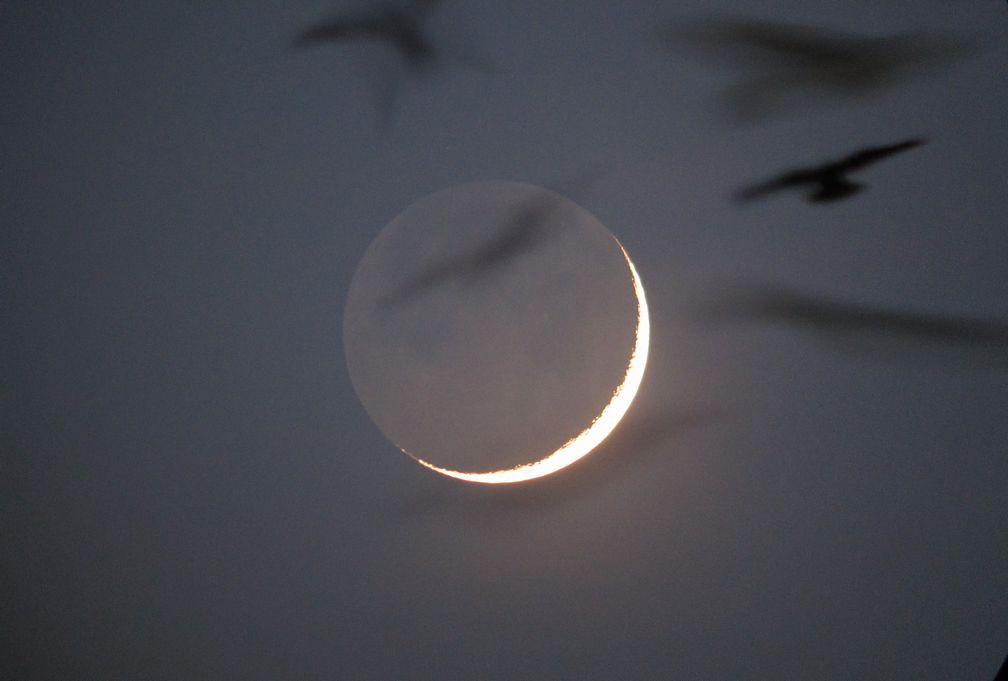 昨晩の月 _e0150433_1752372.jpg