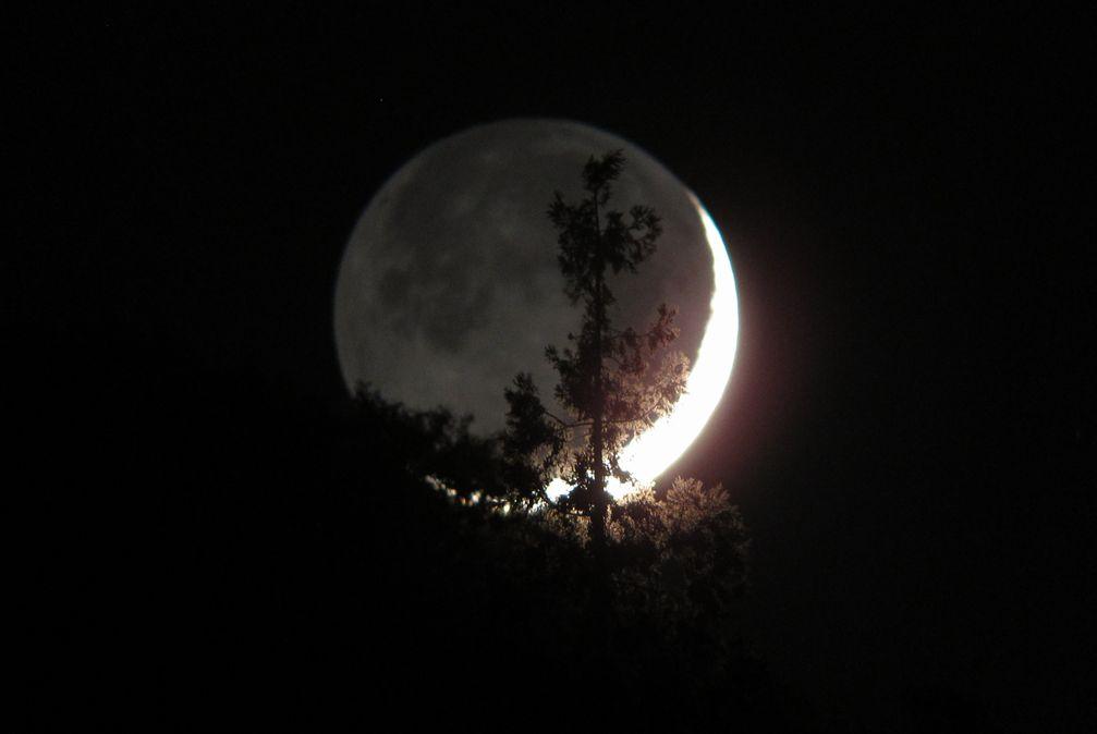 昨晩の月 _e0150433_175821.jpg