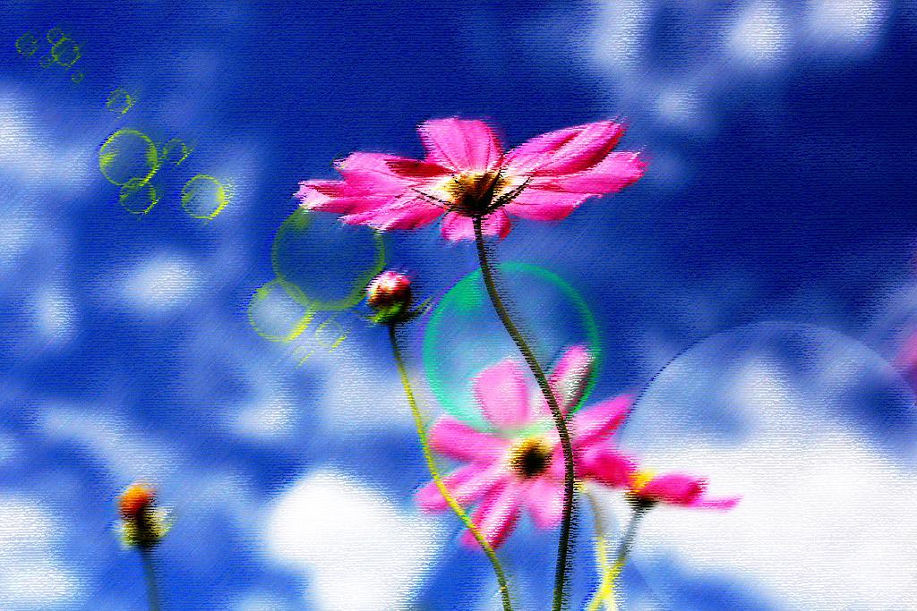 f0160440_11131362.jpg