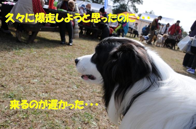 c0147241_18342079.jpg