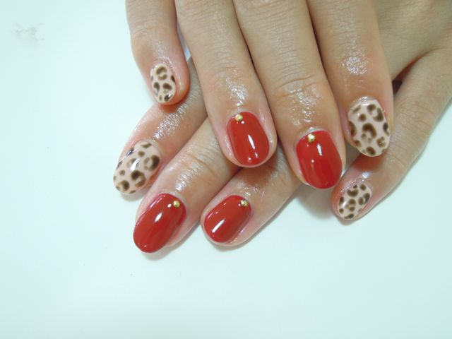 Red Leopard_a0239065_1339592.jpg