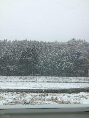 ハルの初雪〜本当は紅葉が見たかったんです〜_b0224969_20561364.jpg