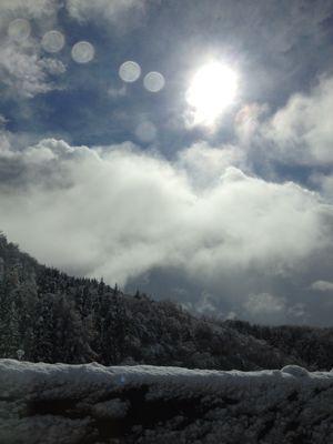 ハルの初雪〜本当は紅葉が見たかったんです〜_b0224969_20561544.jpg