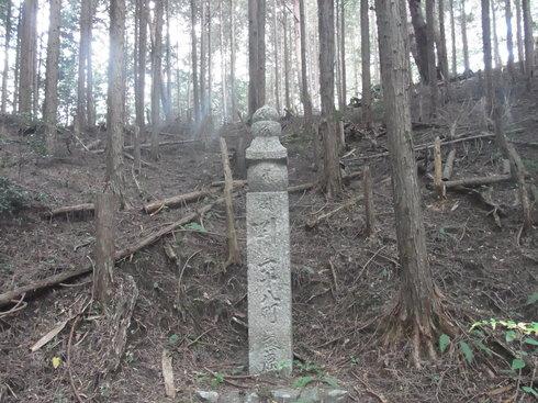 一日目:高野山へトレッキング_a0207588_22464267.jpg
