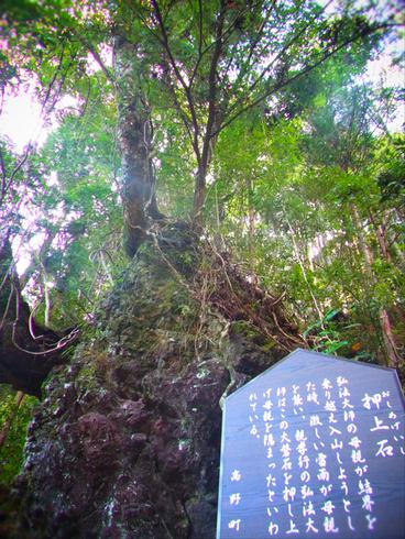一日目:高野山へトレッキング_a0207588_2251280.jpg