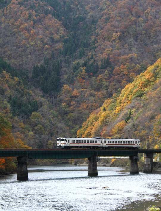 撮り鉄ー紅葉を縫う鉄道・高山線より_d0088788_0391069.jpg