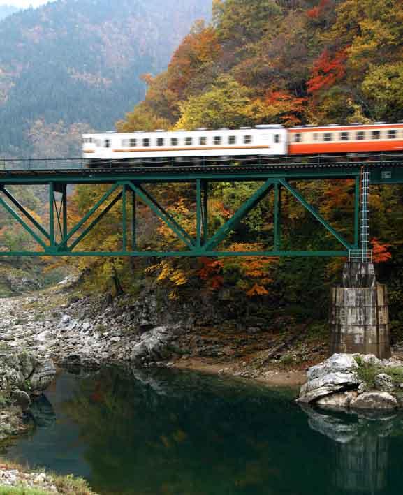 撮り鉄ー紅葉を縫う鉄道・高山線より_d0088788_040323.jpg