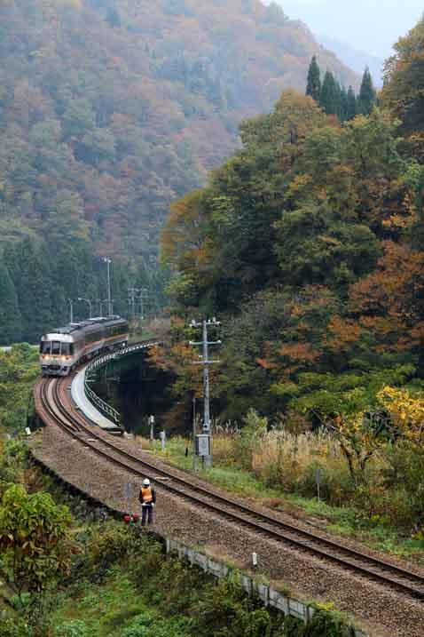 撮り鉄ー紅葉を縫う鉄道・高山線より_d0088788_04371.jpg