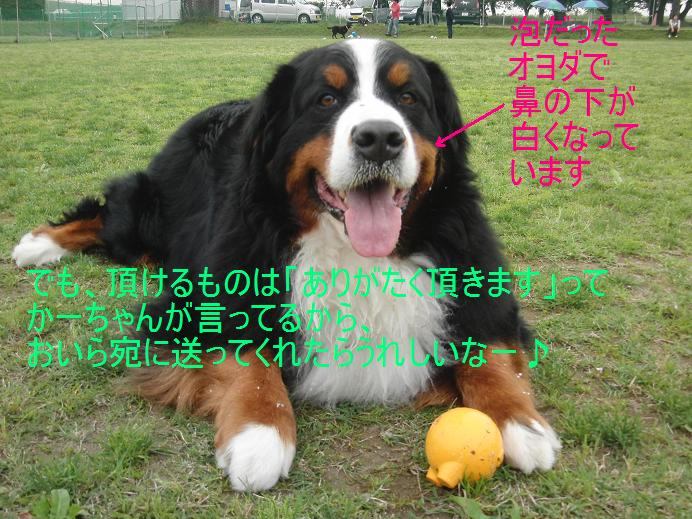 c0149495_14533517.jpg
