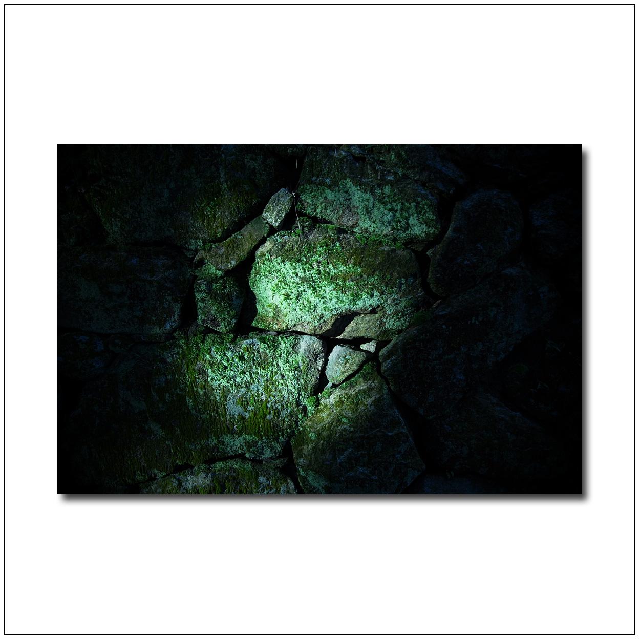 園城寺の秋_e0214724_179835.jpg