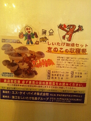 『きのこの収穫祭』_e0131462_16461615.jpg