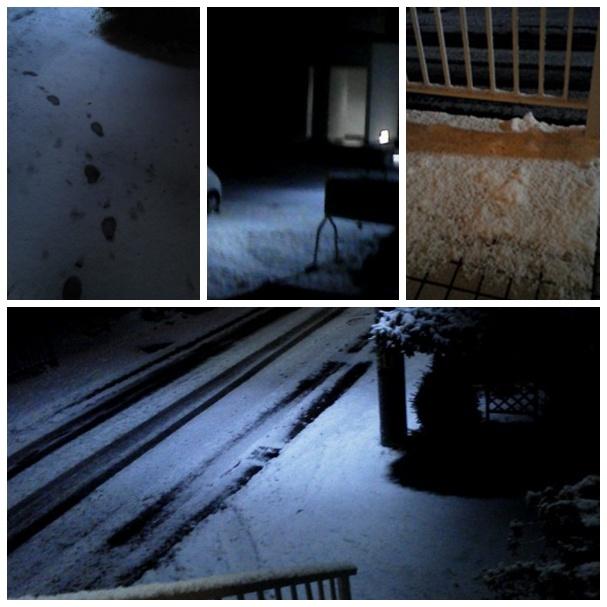 記録的な遅さの「初雪」_b0236665_20525691.jpg