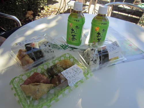 国営昭和記念公園の黄葉&紅葉_a0180279_18191364.jpg