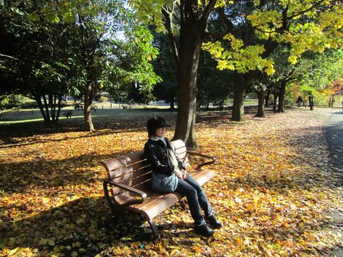 国営昭和記念公園の黄葉&紅葉_a0180279_19122398.jpg