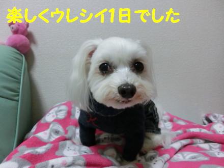 b0193480_12232485.jpg