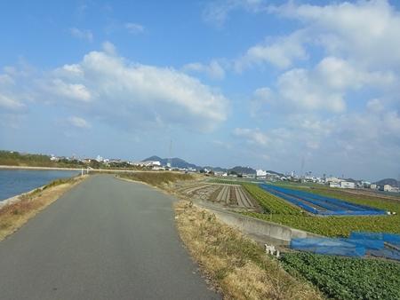 自転車王国とくしまライド in 鳴門に参加しました_e0201281_16473142.jpg