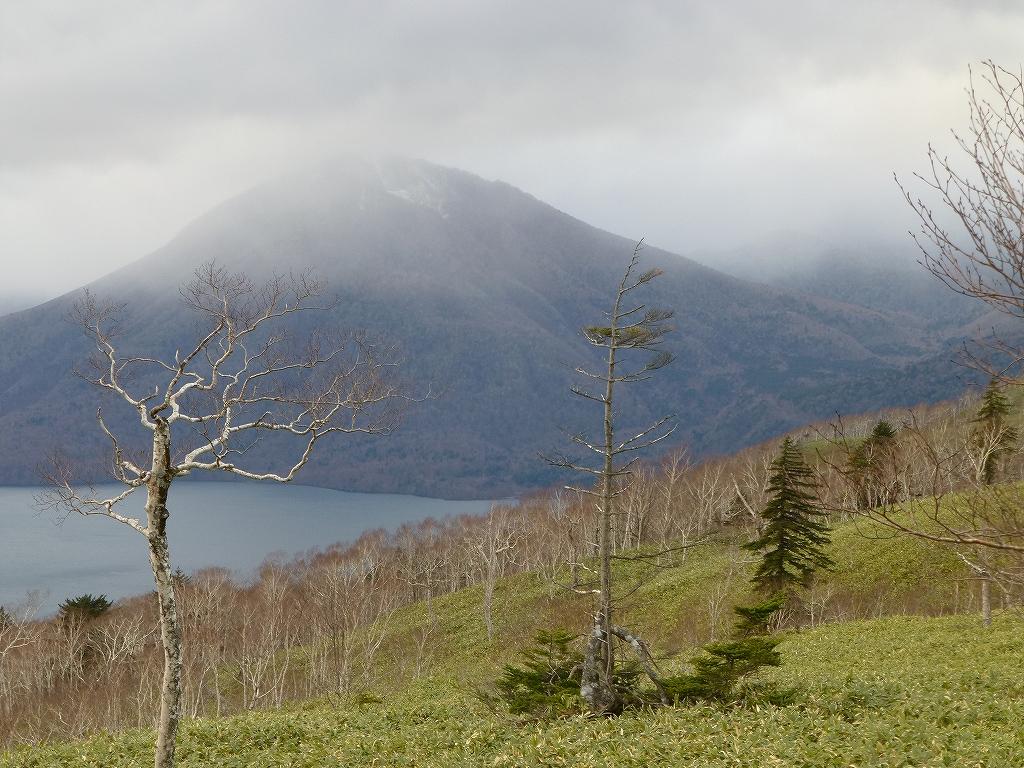 11月16日、恵庭岳、イチャンコッペ山、紋別岳-紋別岳編-_f0138096_13255429.jpg
