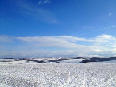 初雪です。_f0096216_144026.jpg