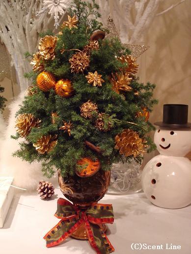 クリスマスリース_c0099133_10265266.jpg