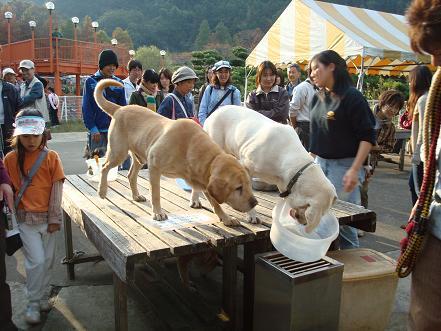 東京ムツゴロウ動物王国 写真その2_c0099133_1027243.jpg