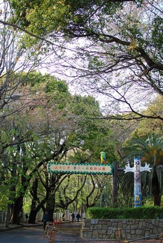 夢見ヶ崎動物公園_c0099133_1028816.jpg