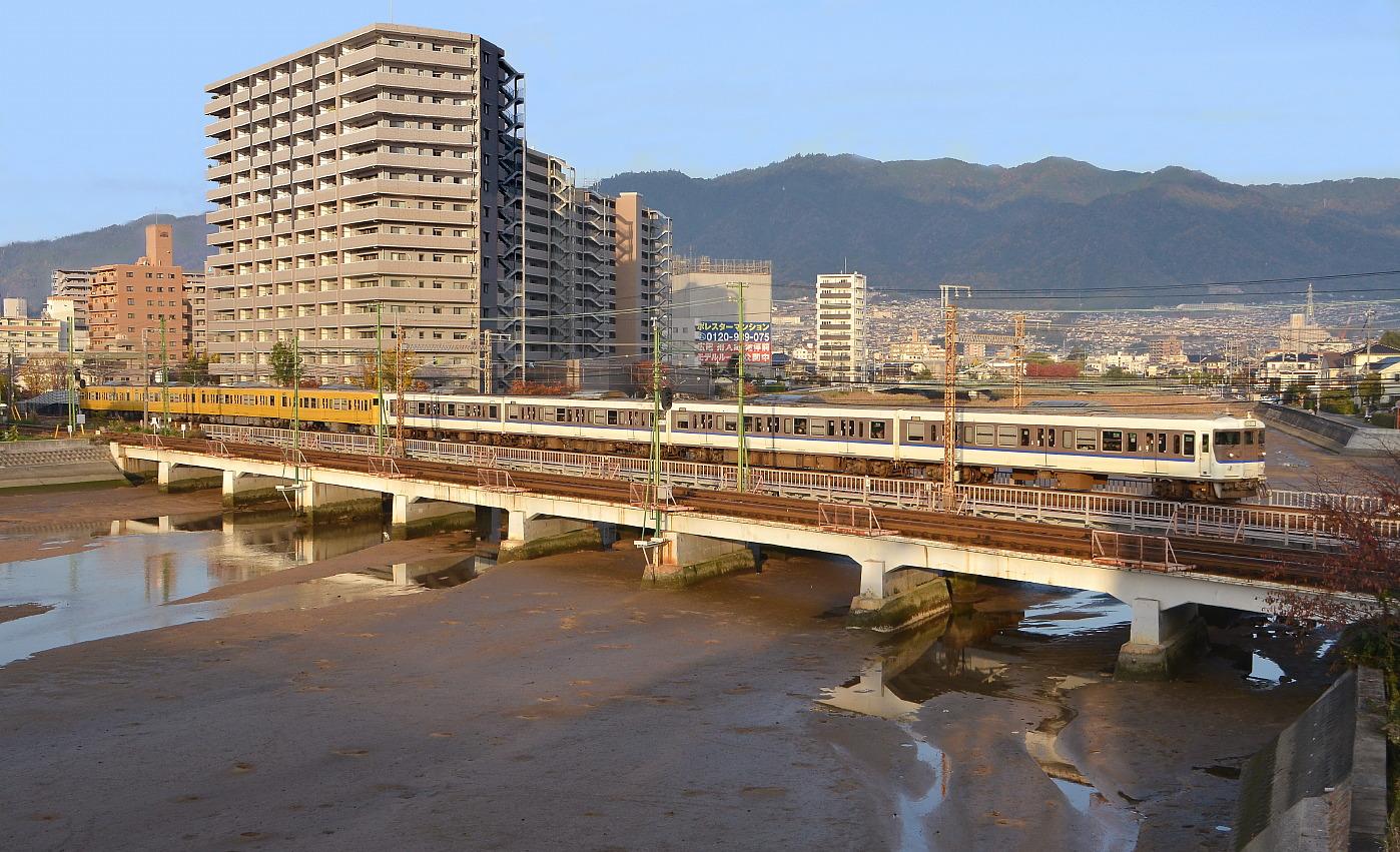 いつもの八幡川・・・'12年11月19日_a0251146_17344848.jpg
