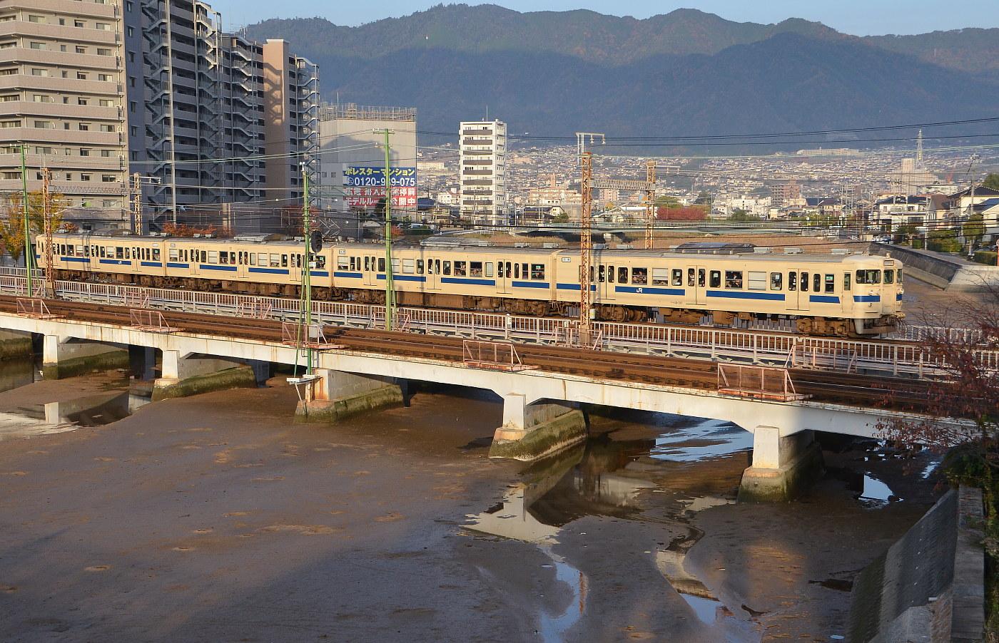 いつもの八幡川・・・'12年11月19日_a0251146_17353251.jpg