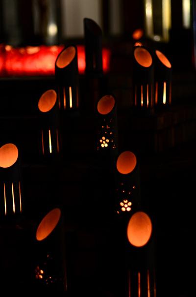 灯明ウォッチング2012_b0016049_2284632.jpg