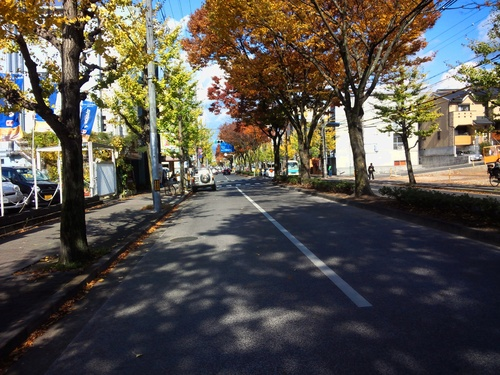 水曜ライド ロードトレーニング 京都・大原三千院 往復130km_d0174462_23554355.jpg