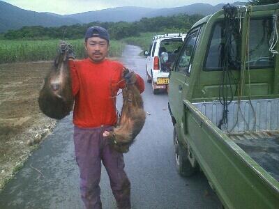 猪猟解禁から4日_e0131462_21375144.jpg