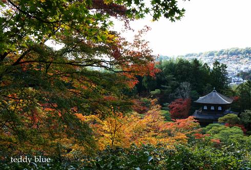 fall walking in Kyoto 2012  秋の京都 紅葉散策_e0253364_22134325.jpg